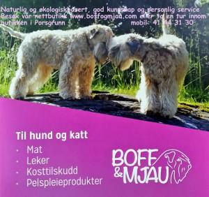 Borre stand